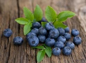 blueberry-2.jpg