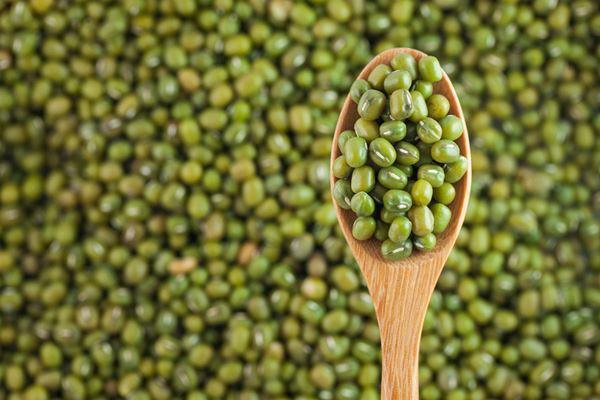 Green_Bean.jpg
