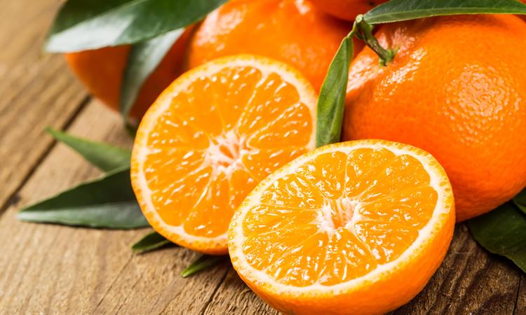 planting-tips-orange.jpg