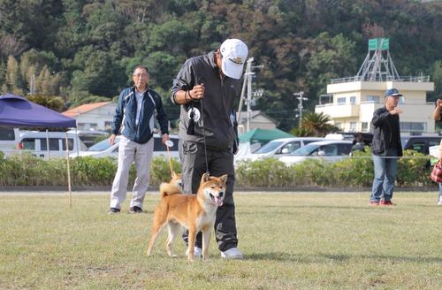 奈月の誉号【讃岐水本荘】 優良3席-C